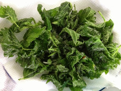 Deep Fried Nettles, Wild Food, Nettle Crisps