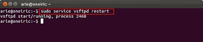 vsftpd2 Cara Mudah Membuat FTP Server di Ubuntu 11.10