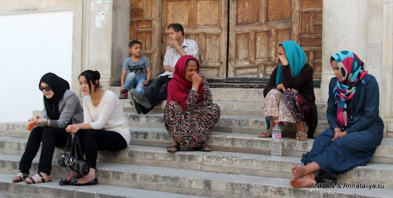 Секс тур в тунис