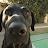 Doug Catiller avatar image