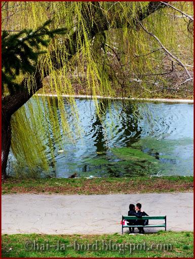 romantism parc tineretului