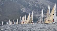 J/24s one-design sailboats- sailing in Italy regatta