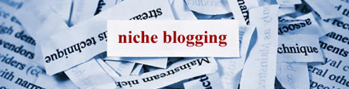 Post image for 4 Ways to Differentiate your Blog within your Niche