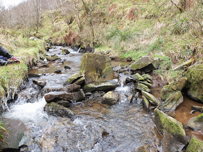 Upstream of site D2 on the River Dove (February 2013)