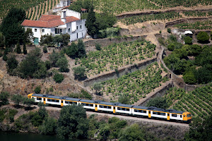 Train in the Douro Valley