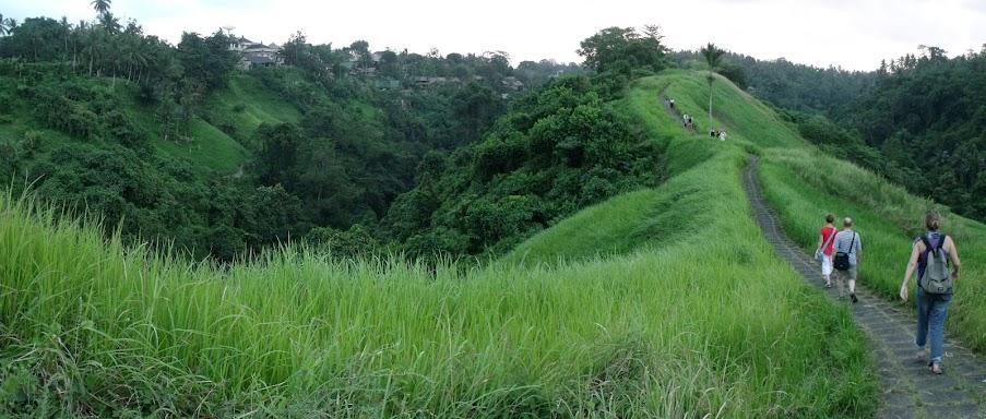 Egy az Ubudot keresztülszelő sétányok közül