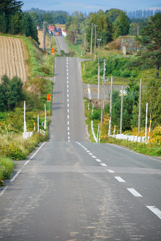 美瑛 ジェットコースターの路 写真2