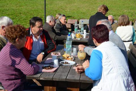 Kostanjev piknik 2013