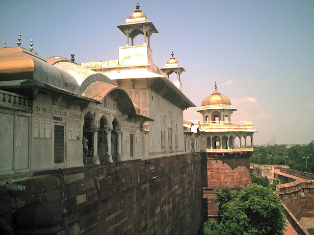 agra fort domes and buildings