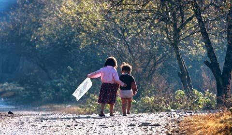 20110919130135 15 Lóng Luông bốn mùa khoe sắc