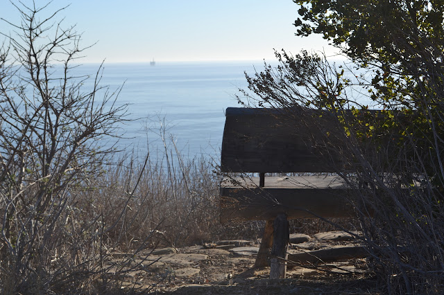 bench for taking in the ocean