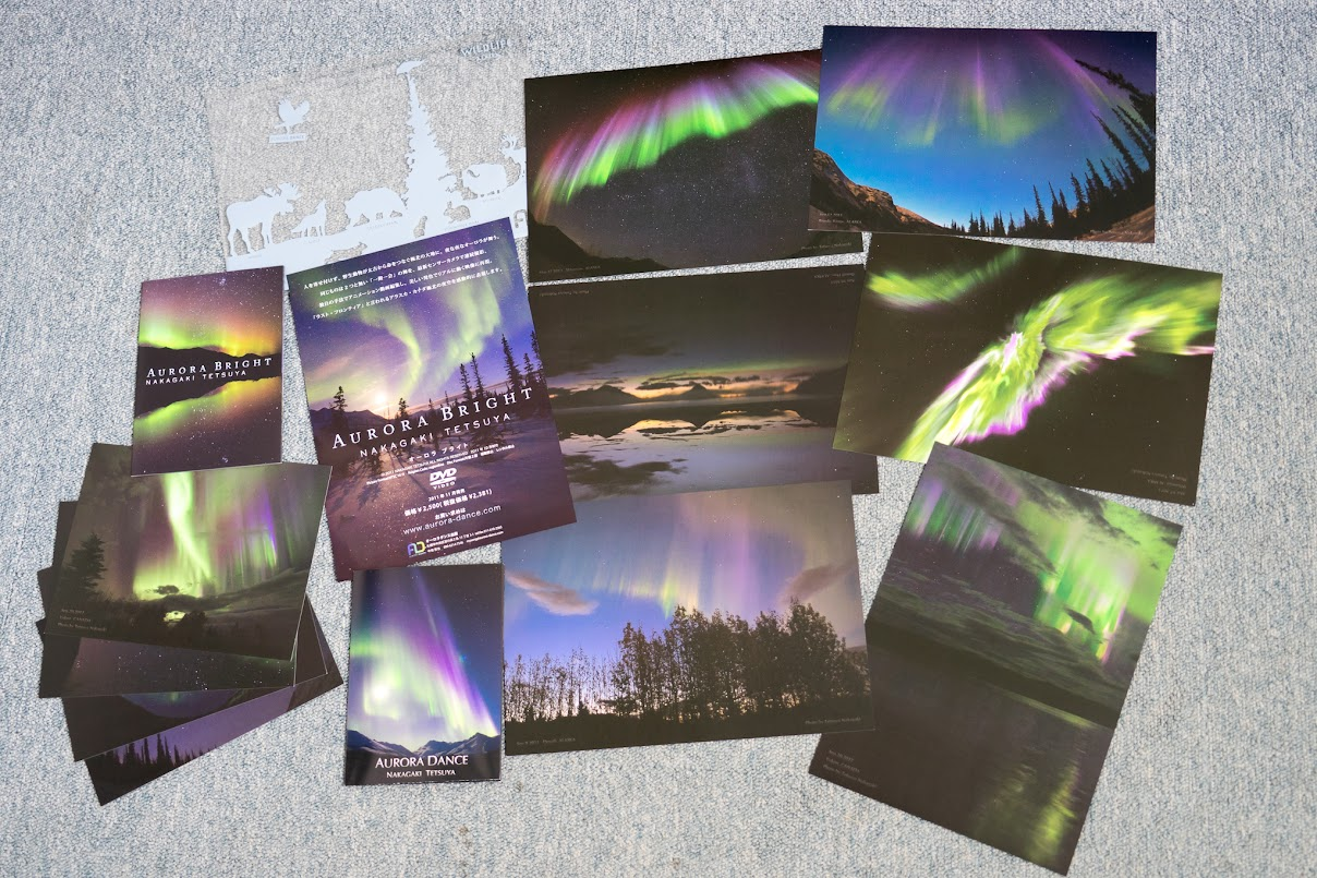 参加者に配られた数々の写真カード