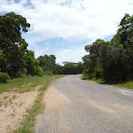 Sealed level road on the coastal walk in the Wallarah Pennisula (388733)