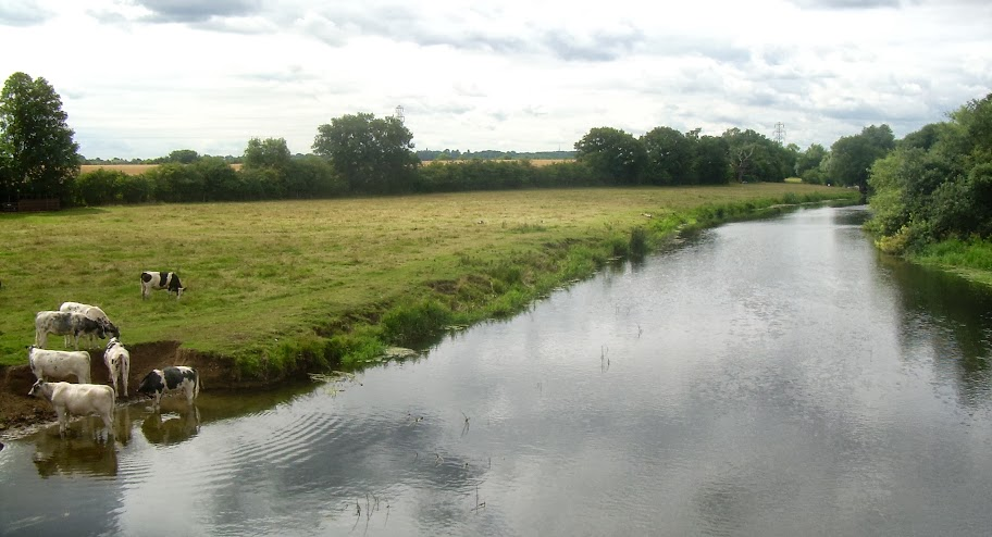 The river Great Ouse at Great Barford