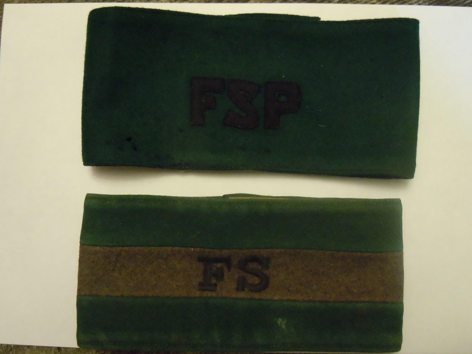 fsp armband 001.JPG
