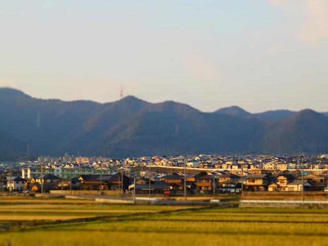 夕日に染まる吉田の住宅街