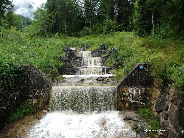 passeando - Passeando pela Suíça - 2012 - Página 14 DSC05083