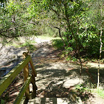 Timber Boardwalk at Brickmakers Creek (344056)