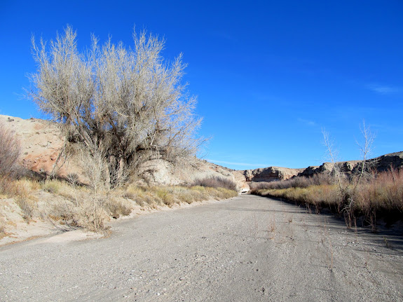 Willow Springs Wash