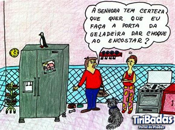 Dieta da geladeira eletrica