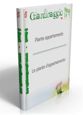 Manuale A A.V V.- Giardinaggio ( Le Piante d'Appartamento )  N/D Ita