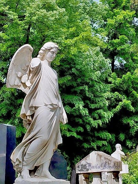 inger cimitir bellu bucuresti