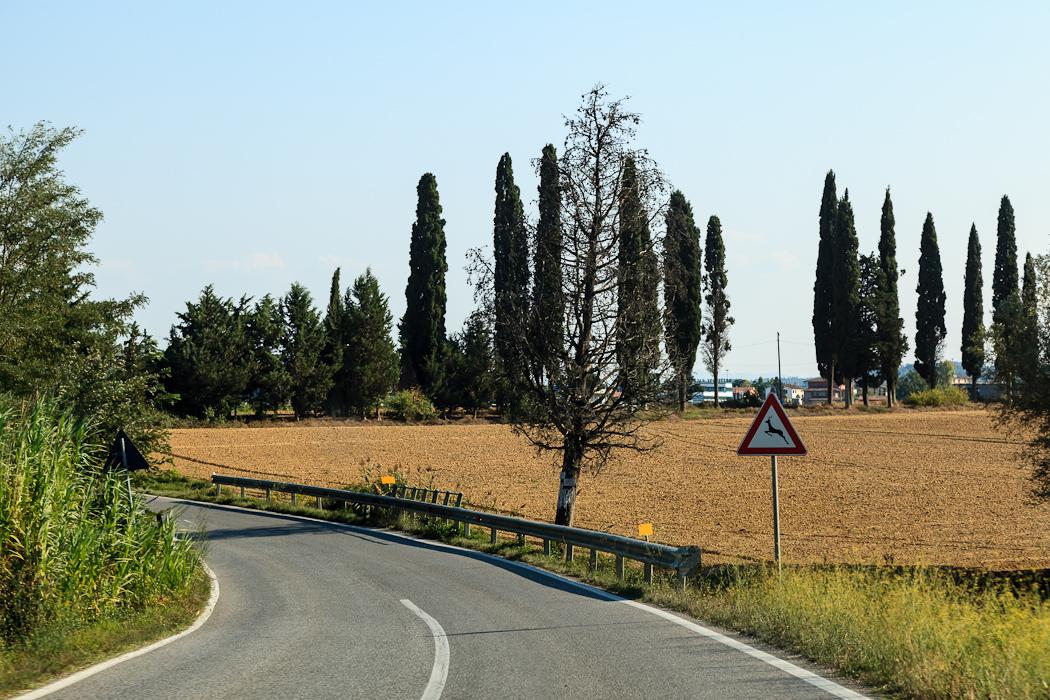Дорога в Вольтерру