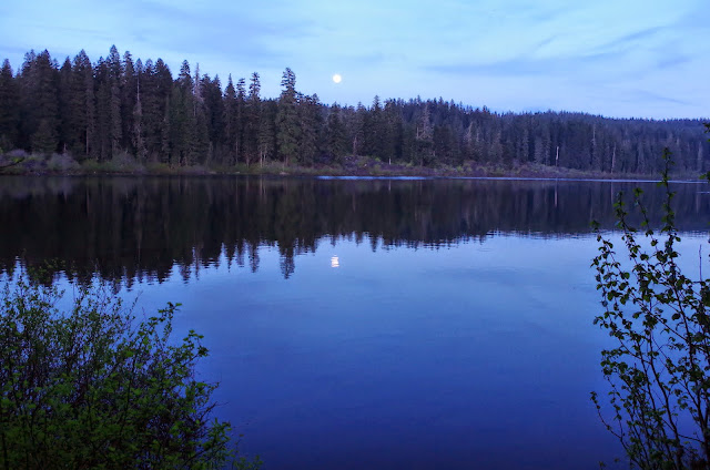 Blue pool sahalie koosah mckenzie clear lake 5 13 14 for Clear lake oregon fishing