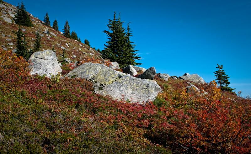 a w dolinach jesień..