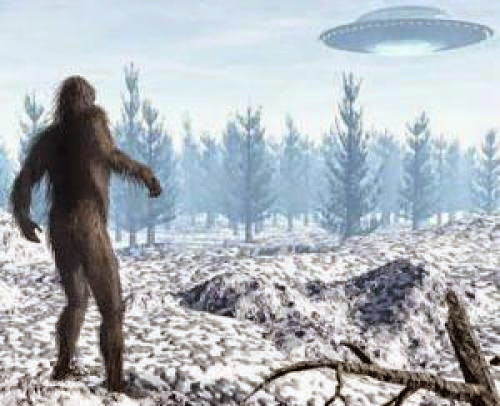 Readers Respond The Interdimensional Sasquatch