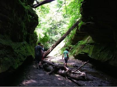 hiking, friends, turkey run, nature
