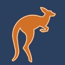 Bonza Marketing logo