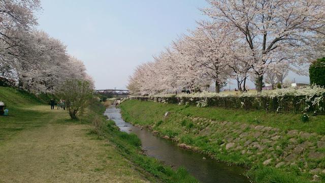 Kenritsu Sagamisansen Park