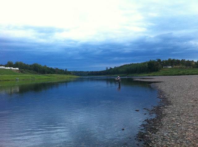Dad fishing for Atlantic Salmon, Salmo Salar where the Renous river and Southwest Miramichi river meet at Quarryville in New Brunswick Canada.