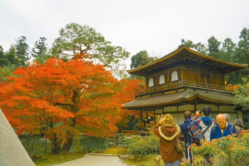 京都 銀閣寺 紅葉 写真2