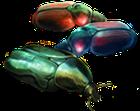 Corpi di scarabei di terra