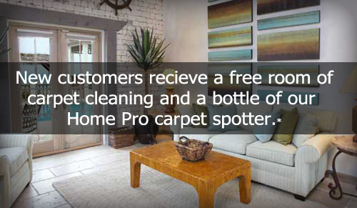 White Bear Lake Minnesota Carpet Cleaning
