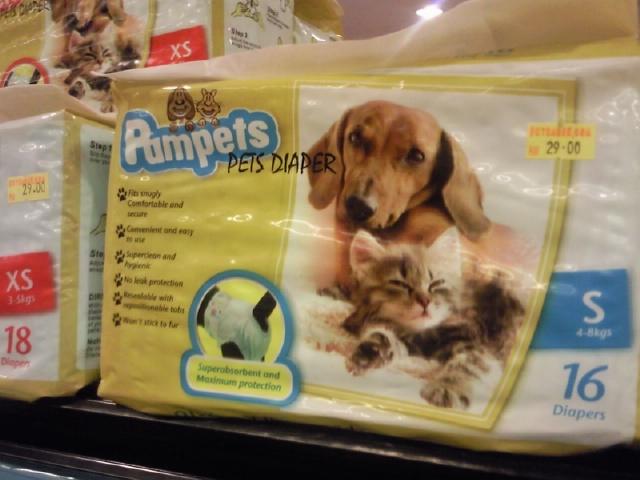 Kitties And Doggies. for kitties and doggies!