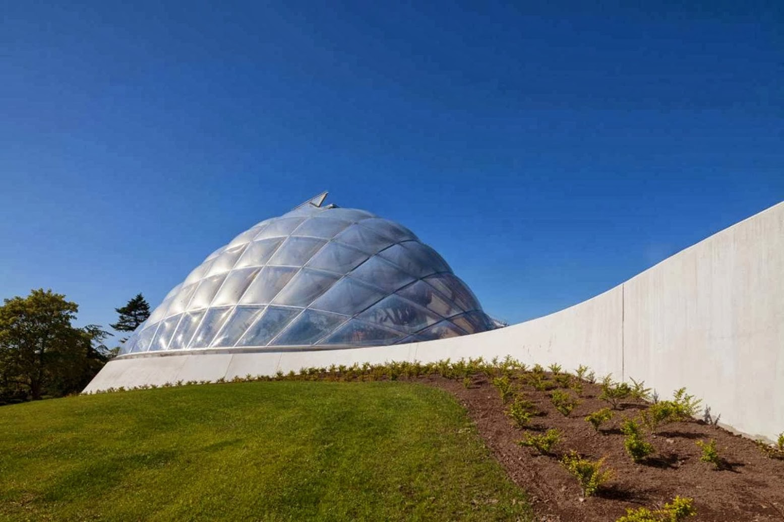06-Greenhouse-in-the-Botanic-Garden-by-C.F.-Møller-Architects