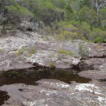 Bittangabee Creek (108013)