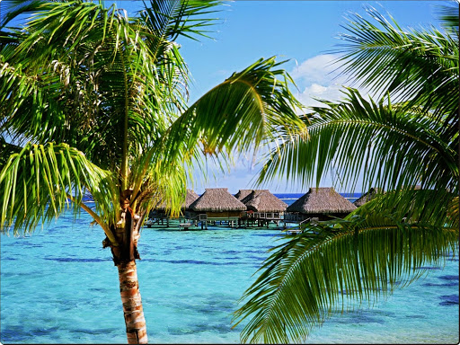 Tropical Accommodations, Moorea Island, French Polynesia.jpg