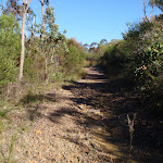 A stretch of the Salvation Loop track (155218)
