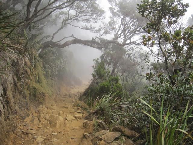 Gunung-Kinabalu-Mount-Kinabalu