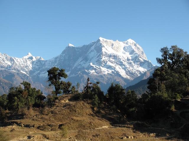 Chaukhamba in the morning light