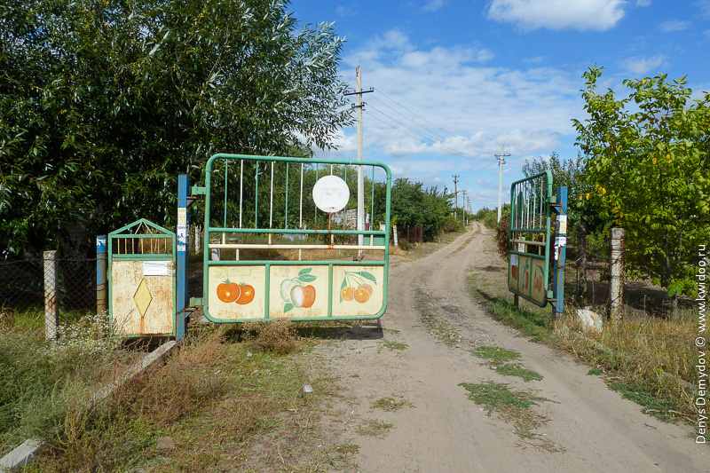 Садовое хозяйство под Запорожьем