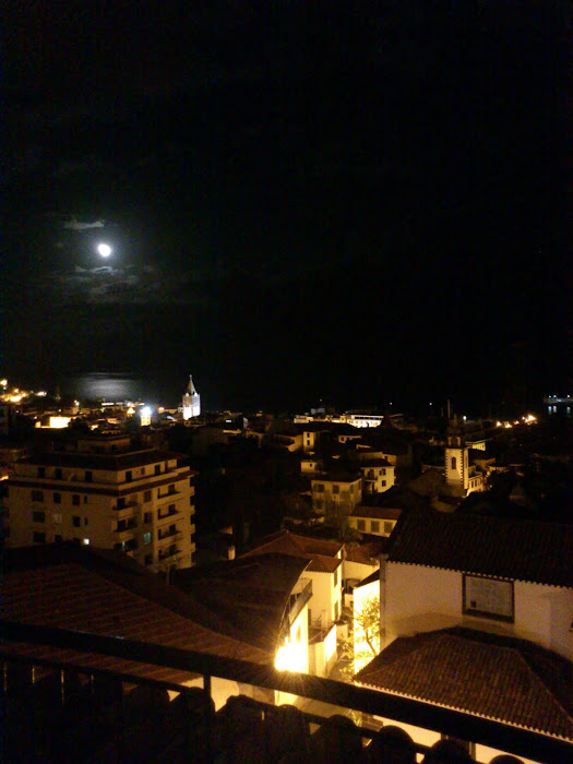 Funchal moonlight