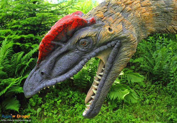 bałtów jura park  - dilophosaurus