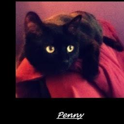 penny5isa