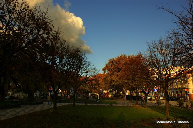 Outono em Setúbal, Avenida Luisa Tody