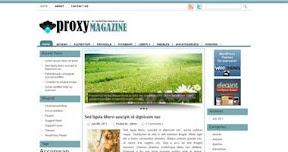 Free Wordpress Theme - Proxy